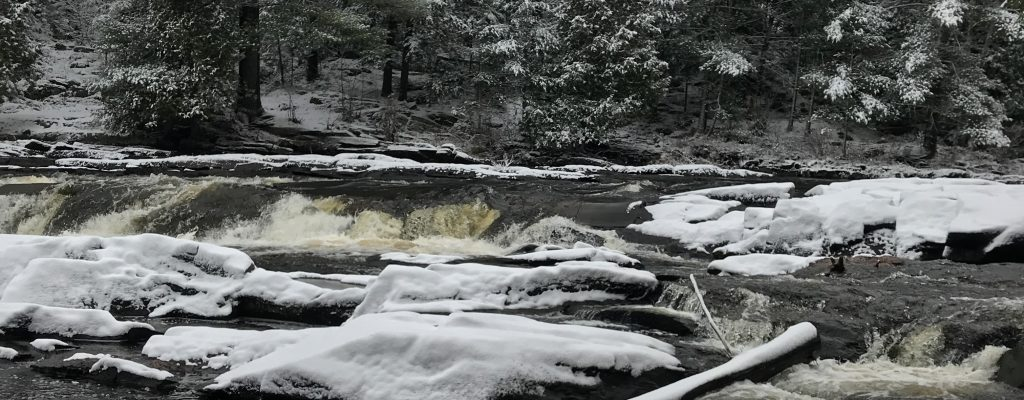 Bracebridge_Nov2017 (6 of 17)